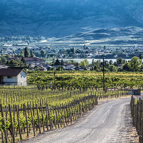 Oliver Osoyoos Wine Country Vineyards