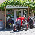 Castoro de Oro Winery