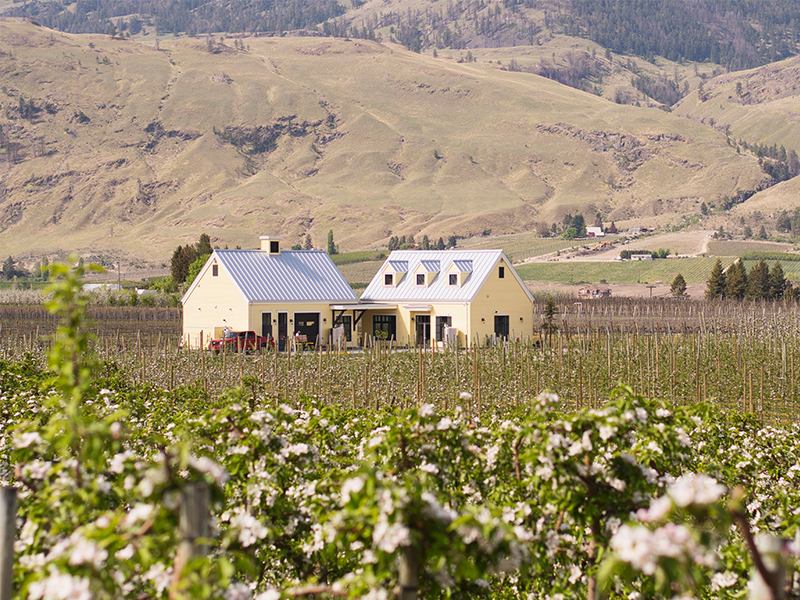 Here's The Thing Vineyards